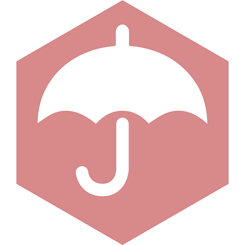 ASSET PROTECTION ICON